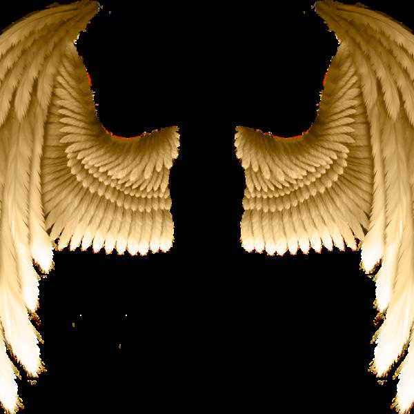 """Ashtanga-Sommerkurs II """"Wurzeln und Flügel"""""""